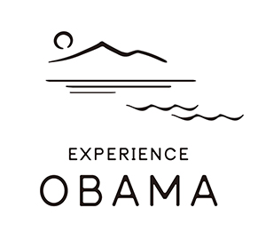 Experience Obama
